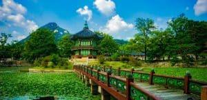 rejseforsikring sydkorea
