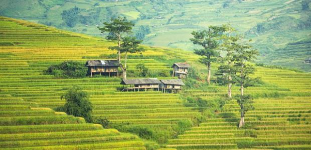 rejseforsikring malaysia